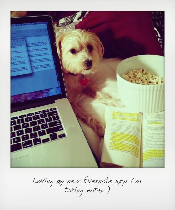 layla, popcorn, evernote