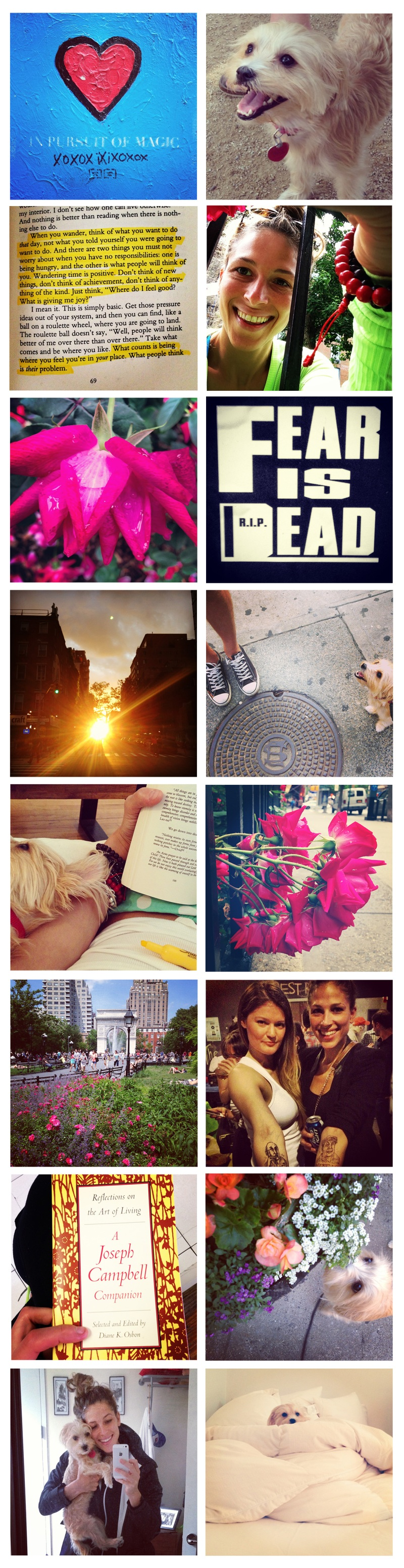 weekend instagrams