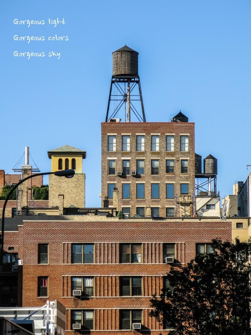 new york city Aug 1 (5 of 41)