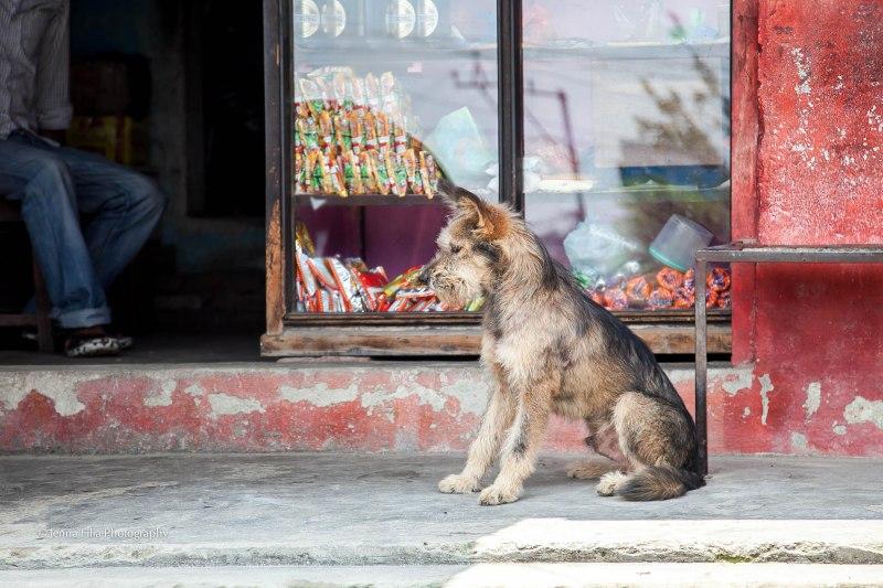 Nepal 5.13-905